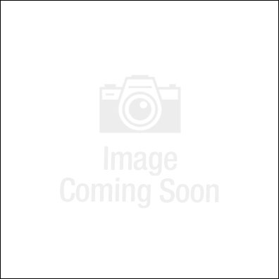 Dog Park Products - Budget Fire Hydrant