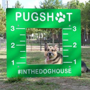 Dog Park Photo Booth - Pugshot
